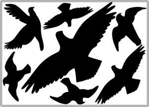 Aufkleberset-Vogelschutz